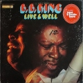 Big Joe Williams ビッグ・ジョー・ウィリアムス / Hand Me Down My Old Walking Stick